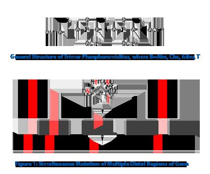 Trimer Phosphoramidites