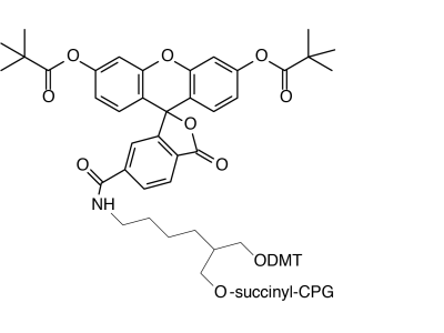 3'-(6-Fluorescein) CPG